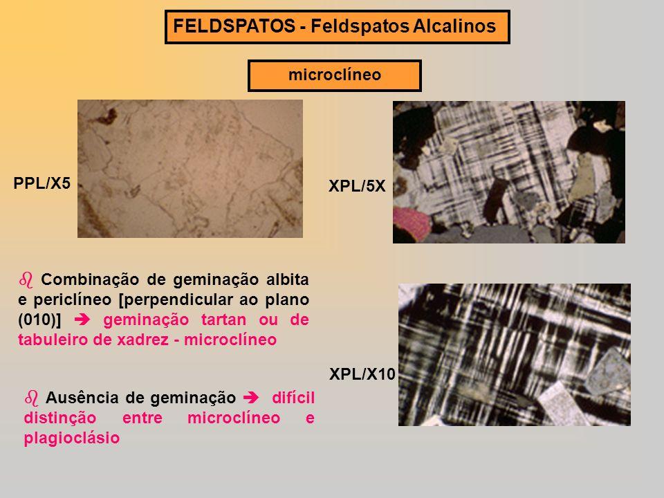 FELDSPATOS - Feldspatos Alcalinos microclíneo PPL/X5 XPL/5X XPL/X10 Combinação de geminação albita e periclíneo [perpendicular ao plano (010)] geminaç