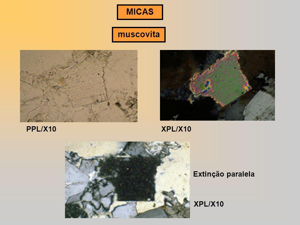 MICAS muscovita PPL/X10XPL/X10 Extinção paralela