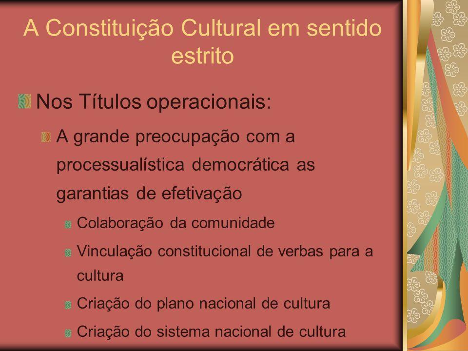 A Constituição Cultural em sentido estrito Nos Títulos operacionais: A grande preocupação com a processualística democrática as garantias de efetivaçã