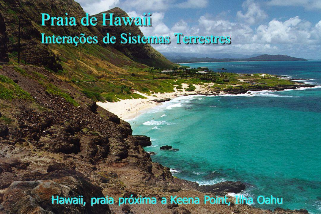 Hawaii, praia próxima a Keena Point, Ilha Oahu Praia de Hawaii Interações de Sistemas Terrestres