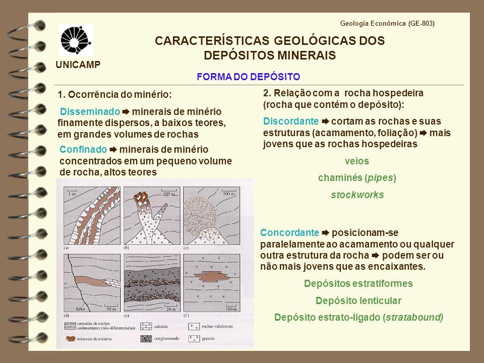 UNICAMP CARACTERÍSTICAS GEOLÓGICAS DOS DEPÓSITOS MINERAIS 1. Ocorrência do minério: Disseminado minerais de minério finamente dispersos, a baixos teor