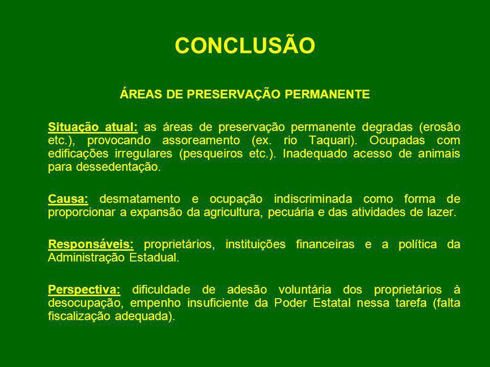 CONCLUSÃO ÁREAS DE PRESERVAÇÃO PERMANENTE Situação atual: as áreas de preservação permanente degradas (erosão etc.), provocando assoreamento (ex. rio