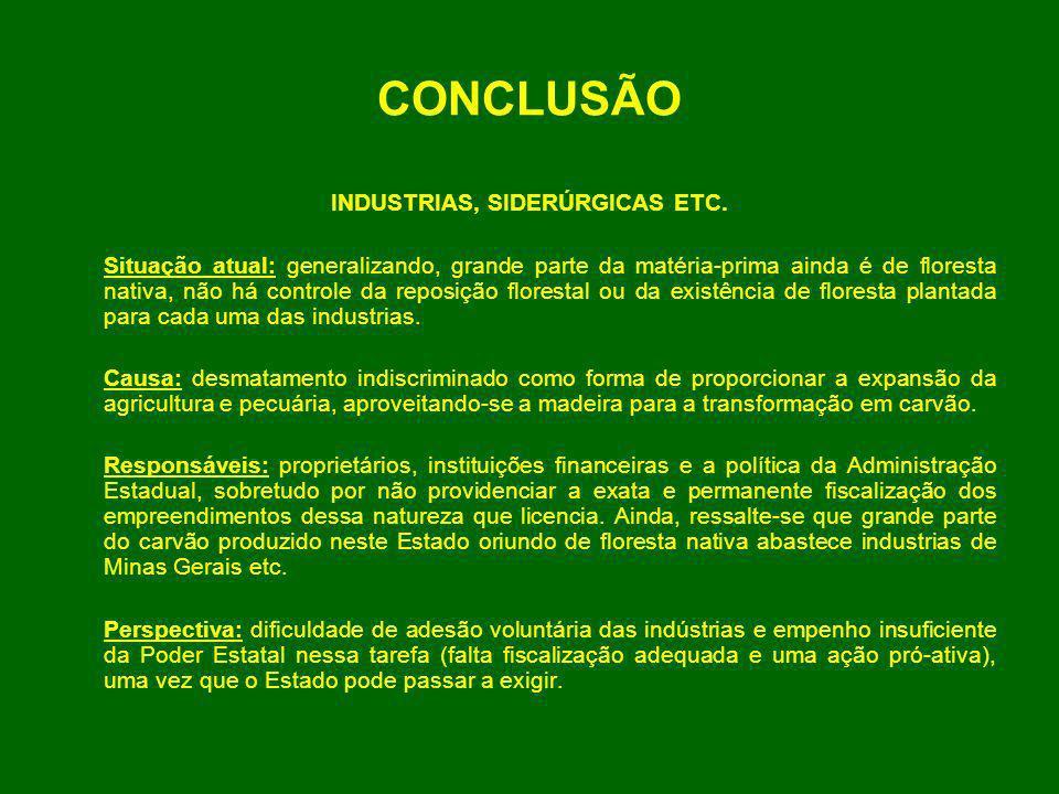 CONCLUSÃO INDUSTRIAS, SIDERÚRGICAS ETC. Situação atual: generalizando, grande parte da matéria-prima ainda é de floresta nativa, não há controle da re