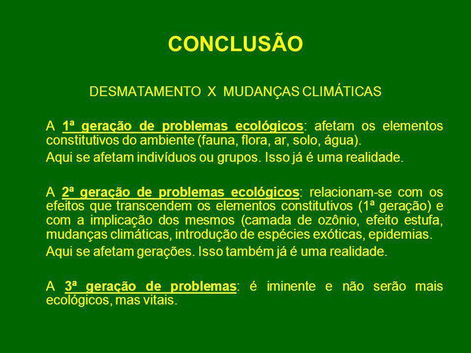 CONCLUSÃO DESMATAMENTO X MUDANÇAS CLIMÁTICAS A 1ª geração de problemas ecológicos: afetam os elementos constitutivos do ambiente (fauna, flora, ar, so