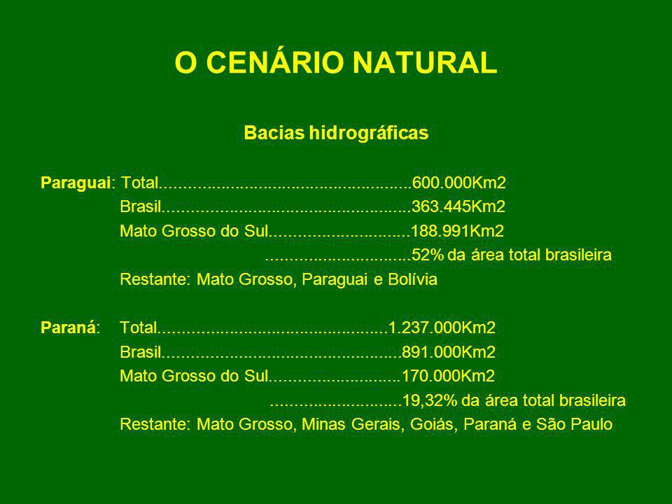 O CENÁRIO NATURAL Bacias hidrográficas Paraguai: Total......................................................600.000Km2 Brasil.........................