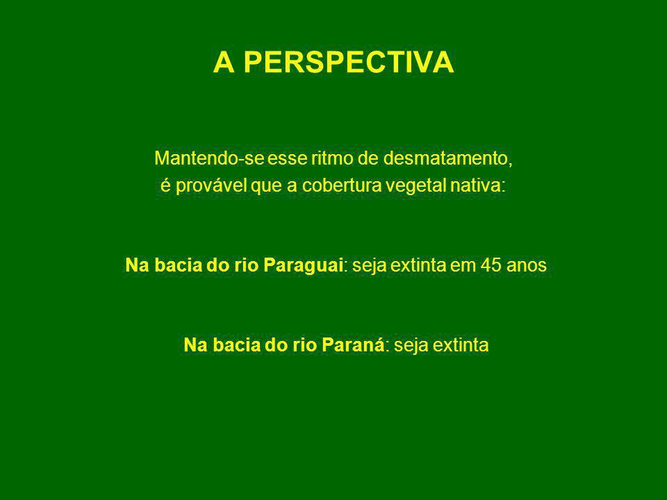 A PERSPECTIVA Mantendo-se esse ritmo de desmatamento, é provável que a cobertura vegetal nativa: Na bacia do rio Paraguai: seja extinta em 45 anos Na