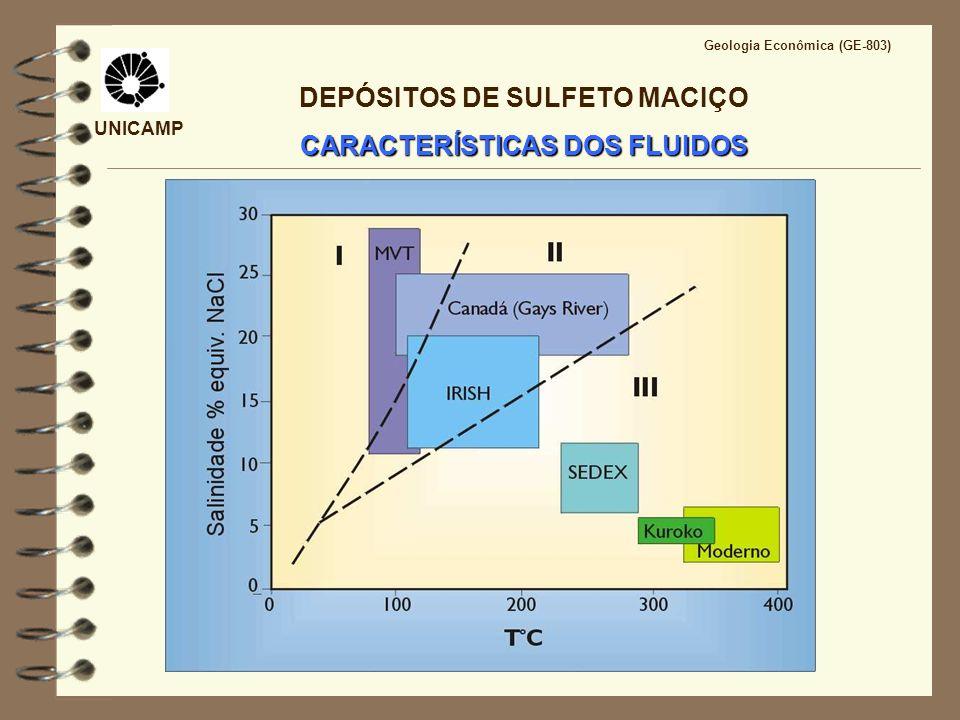 UNICAMP Geologia Econômica (GE-803) DEPÓSITOS DE SULFETO MACIÇO CARACTERÍSTICAS DOS FLUIDOS