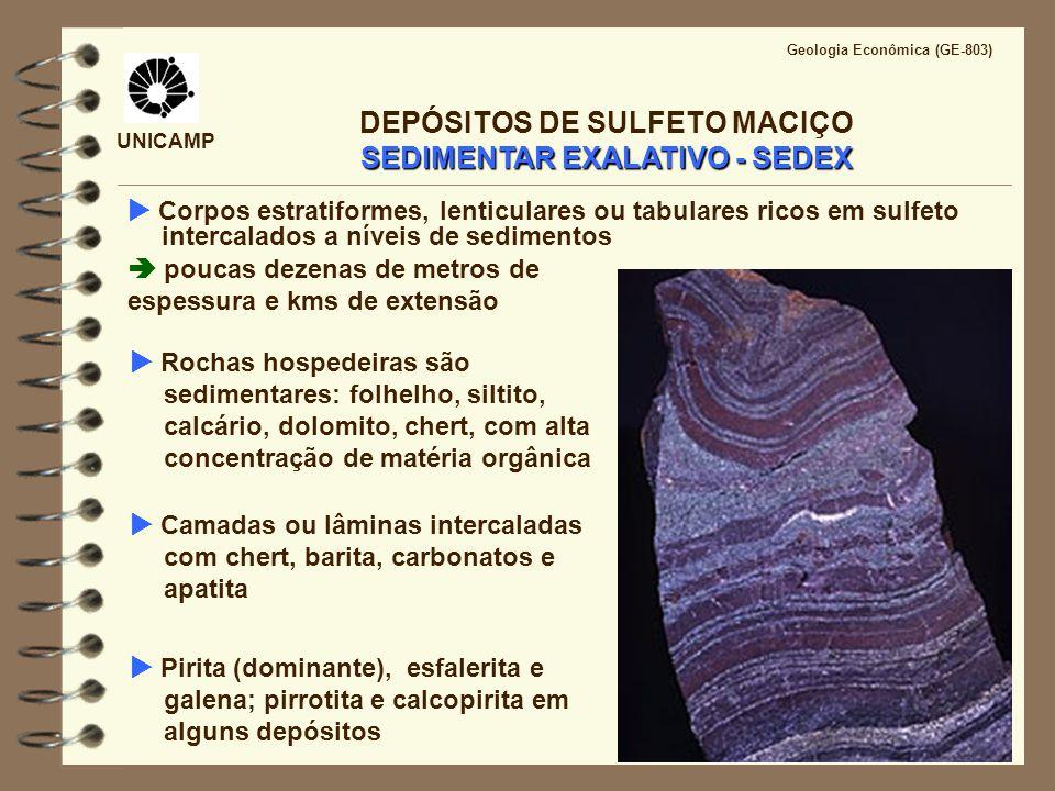 UNICAMP Geologia Econômica (GE-803) SEDIMENTAR EXALATIVO - SEDEX DEPÓSITOS DE SULFETO MACIÇO SEDIMENTAR EXALATIVO - SEDEX Corpos estratiformes, lentic