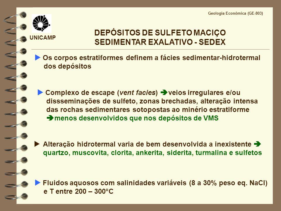 UNICAMP Geologia Econômica (GE-803) DEPÓSITOS DE SULFETO MACIÇO SEDIMENTAR EXALATIVO - SEDEX Os corpos estratiformes definem a fácies sedimentar-hidro