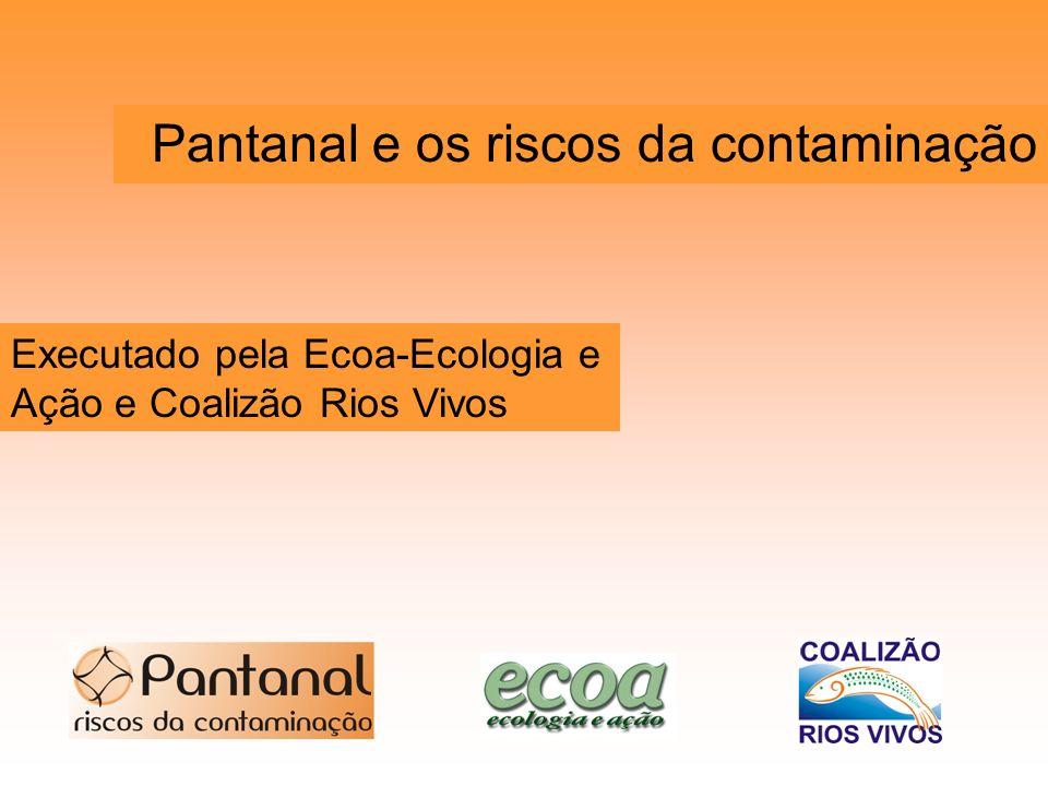 Executado pela Ecoa-Ecologia e Ação e Coalizão Rios Vivos Pantanal e os riscos da contaminação