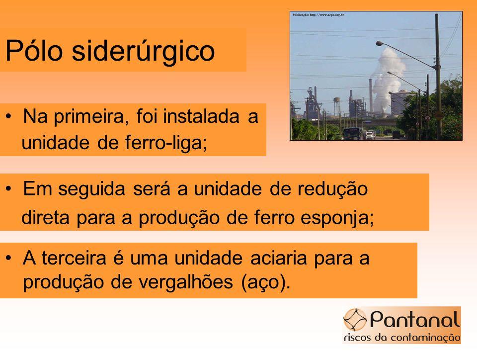 Pólo siderúrgico A terceira é uma unidade aciaria para a produção de vergalhões (aço). Na primeira, foi instalada a unidade de ferro-liga; Em seguida