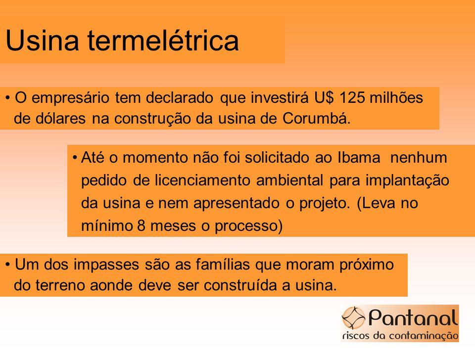 Usina termelétrica O empresário tem declarado que investirá U$ 125 milhões de dólares na construção da usina de Corumbá. Até o momento não foi solicit