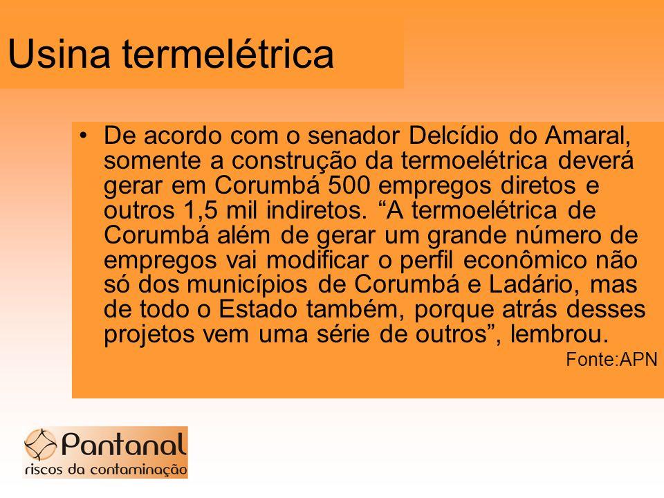 Usina termelétrica De acordo com o senador Delcídio do Amaral, somente a construção da termoelétrica deverá gerar em Corumbá 500 empregos diretos e ou