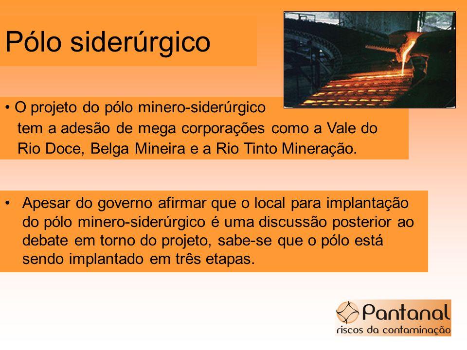 Pólo siderúrgico Apesar do governo afirmar que o local para implantação do pólo minero-siderúrgico é uma discussão posterior ao debate em torno do pro