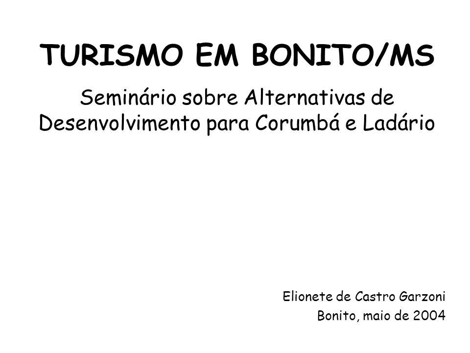TURISMO EM BONITO/MS Elionete de Castro Garzoni Bonito, maio de 2004 Seminário sobre Alternativas de Desenvolvimento para Corumbá e Ladário