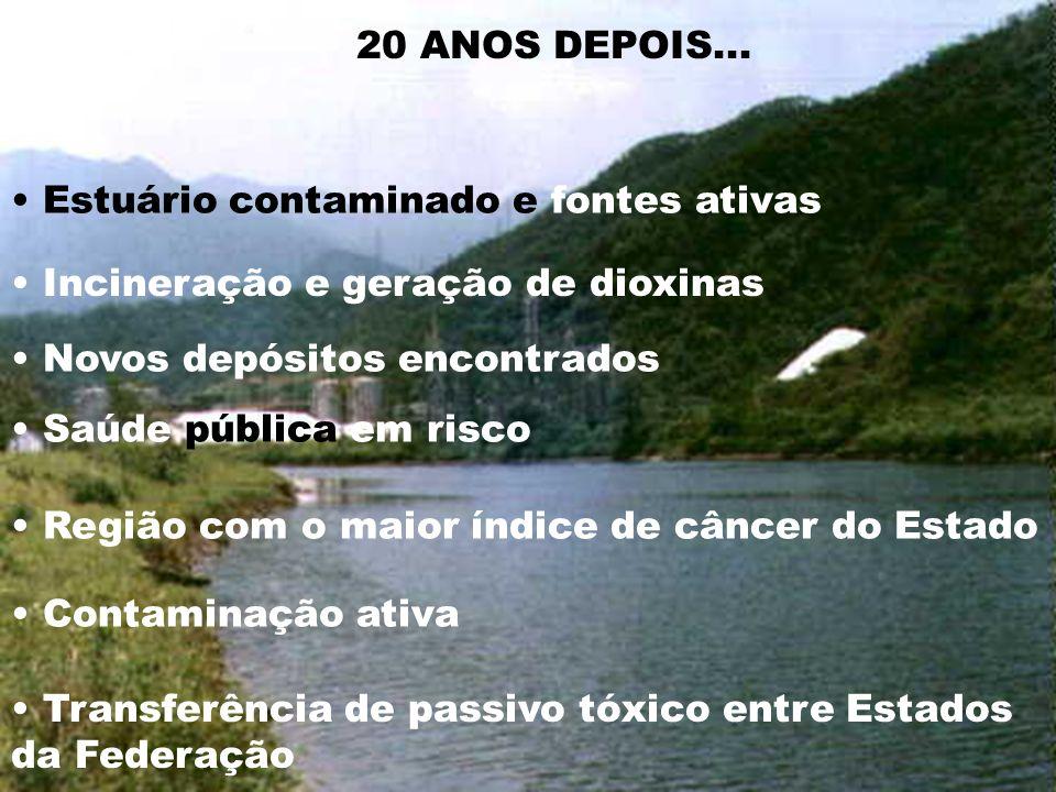 Estuário contaminado e fontes ativas Incineração e geração de dioxinas Transferência de passivo tóxico entre Estados da Federação Contaminação ativa S