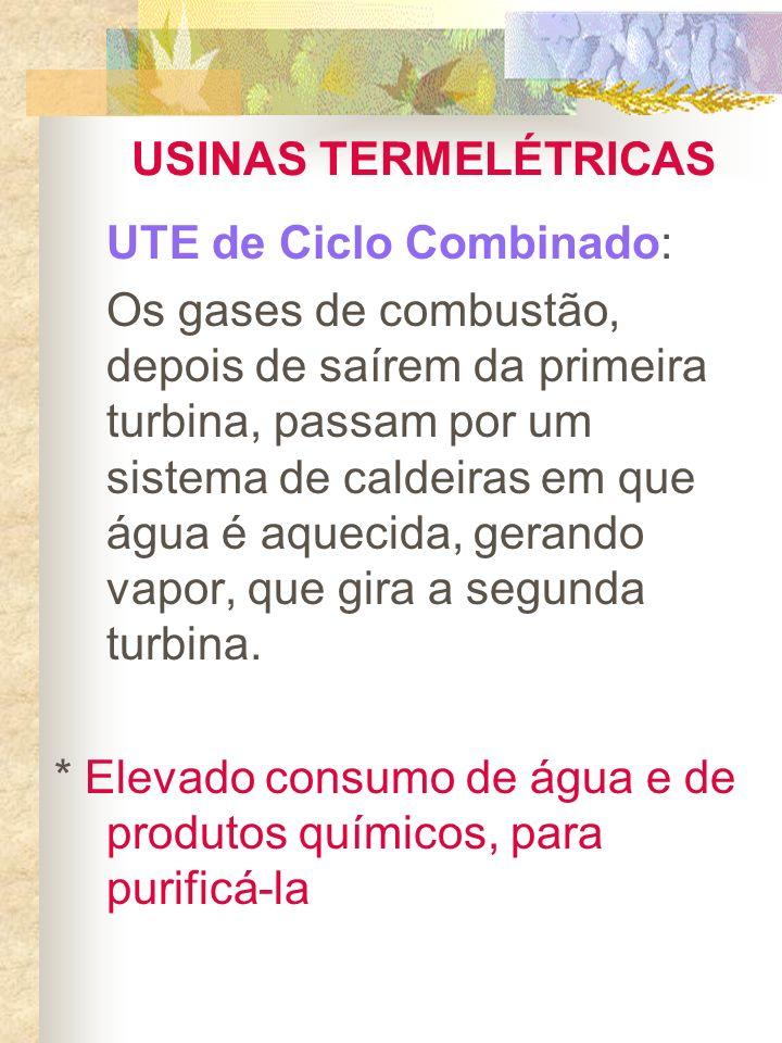 PROBLEMAS AMBIENTAIS Combustão gera gases causadores do efeito estufa: CH 4 + 2O 2 CO 2 + H 2 O Efeito estufa x aquecimento global x mudanças climáticas x Protocolo de Quioto (ratificado pelo governo brasileiro em Julho/2002) Ex: UTE W.