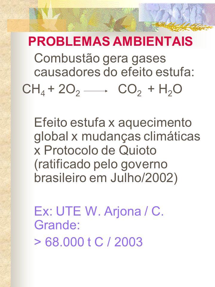 PROBLEMAS AMBIENTAIS Combustão gera gases causadores do efeito estufa: CH 4 + 2O 2 CO 2 + H 2 O Efeito estufa x aquecimento global x mudanças climátic
