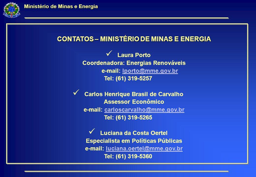 Ministério de Minas e Energia CONTATOS – MINISTÉRIO DE MINAS E ENERGIA Laura Porto Coordenadora: Energias Renováveis e-mail: lporto@mme.gov.brlporto@mme.gov.br Tel: (61) 319-5257 Carlos Henrique Brasil de Carvalho Assessor Econômico e-mail: carloscarvalho@mme.gov.brcarloscarvalho@mme.gov.br Tel: (61) 319-5265 Luciana da Costa Oertel Especialista em Políticas Públicas e-mail: luciana.oertel@mme.gov.brluciana.oertel@mme.gov.br Tel: (61) 319-5360
