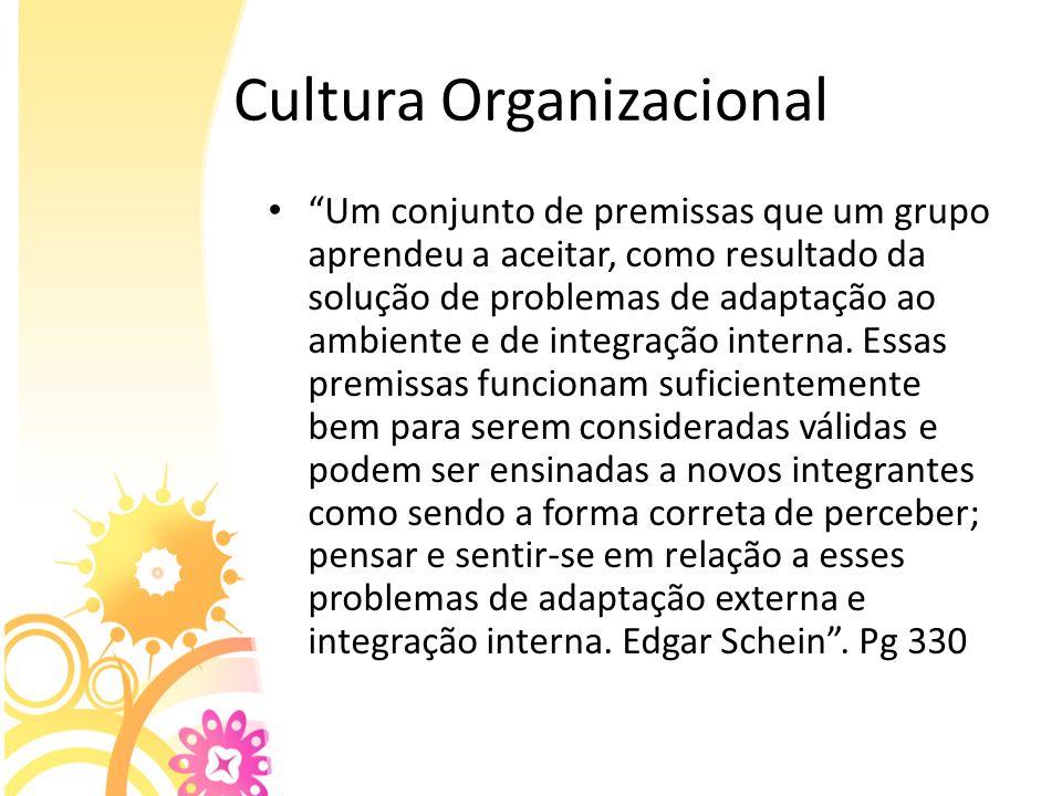 Cultura Organizacional Um conjunto de premissas que um grupo aprendeu a aceitar, como resultado da solução de problemas de adaptação ao ambiente e de