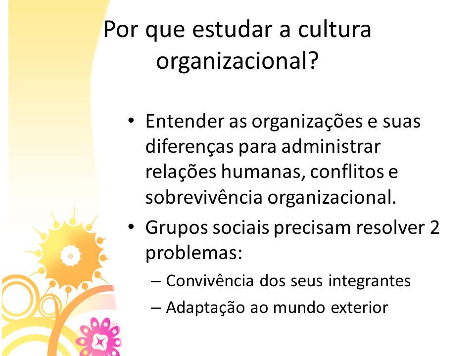 Por que estudar a cultura organizacional? Entender as organizações e suas diferenças para administrar relações humanas, conflitos e sobrevivência orga