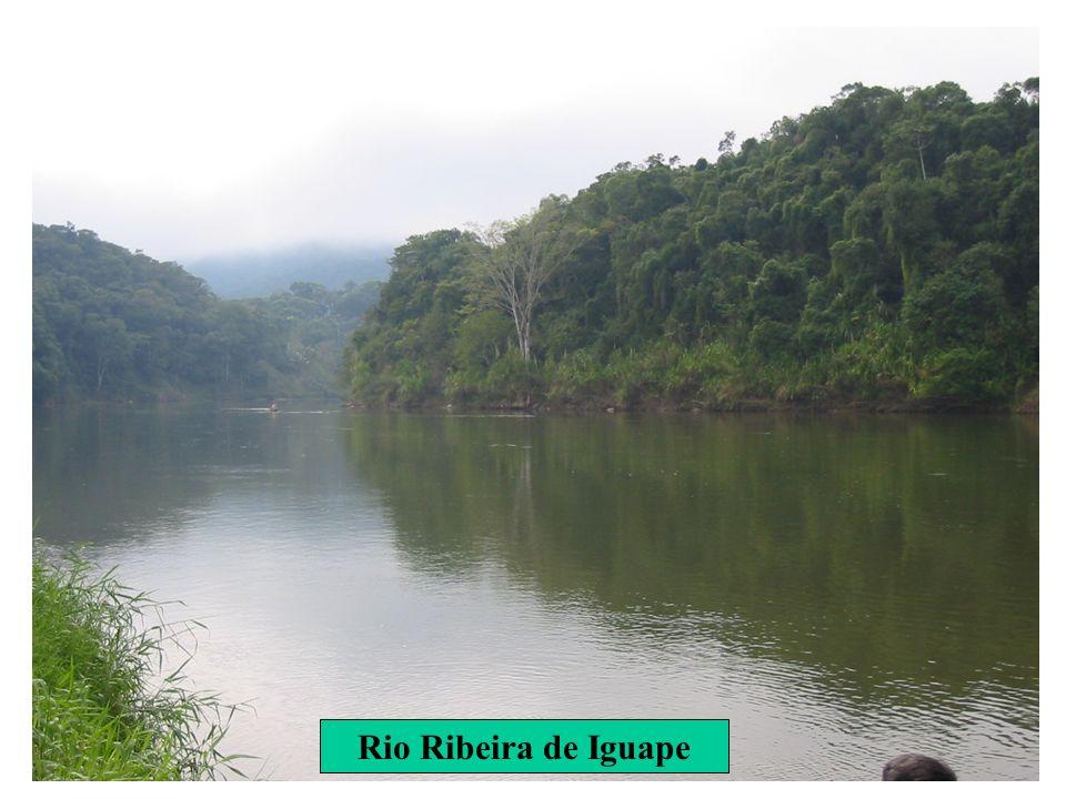 Rio Ribeira de Iguape