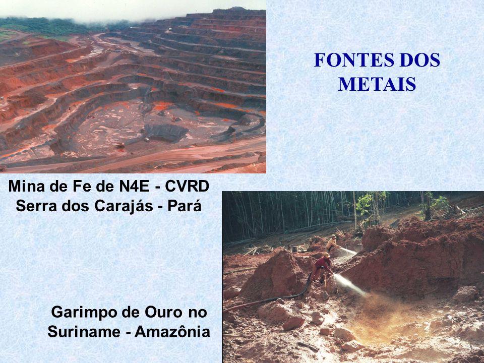 Mina de Fe de N4E - CVRD Serra dos Carajás - Pará Garimpo de Ouro no Suriname - Amazônia FONTES DOS METAIS