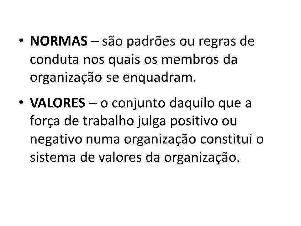 NORMAS – são padrões ou regras de conduta nos quais os membros da organização se enquadram. VALORES – o conjunto daquilo que a força de trabalho julga