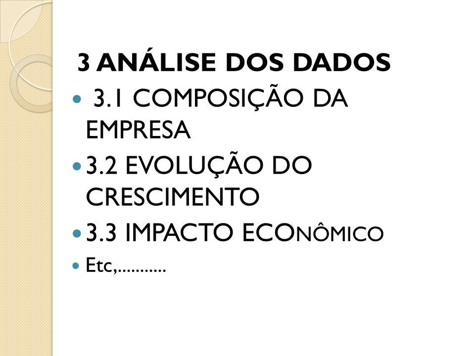 3 ANÁLISE DOS DADOS 3.1 COMPOSIÇÃO DA EMPRESA 3.2 EVOLUÇÃO DO CRESCIMENTO 3.3 IMPACTO ECO NÔMICO Etc,...........