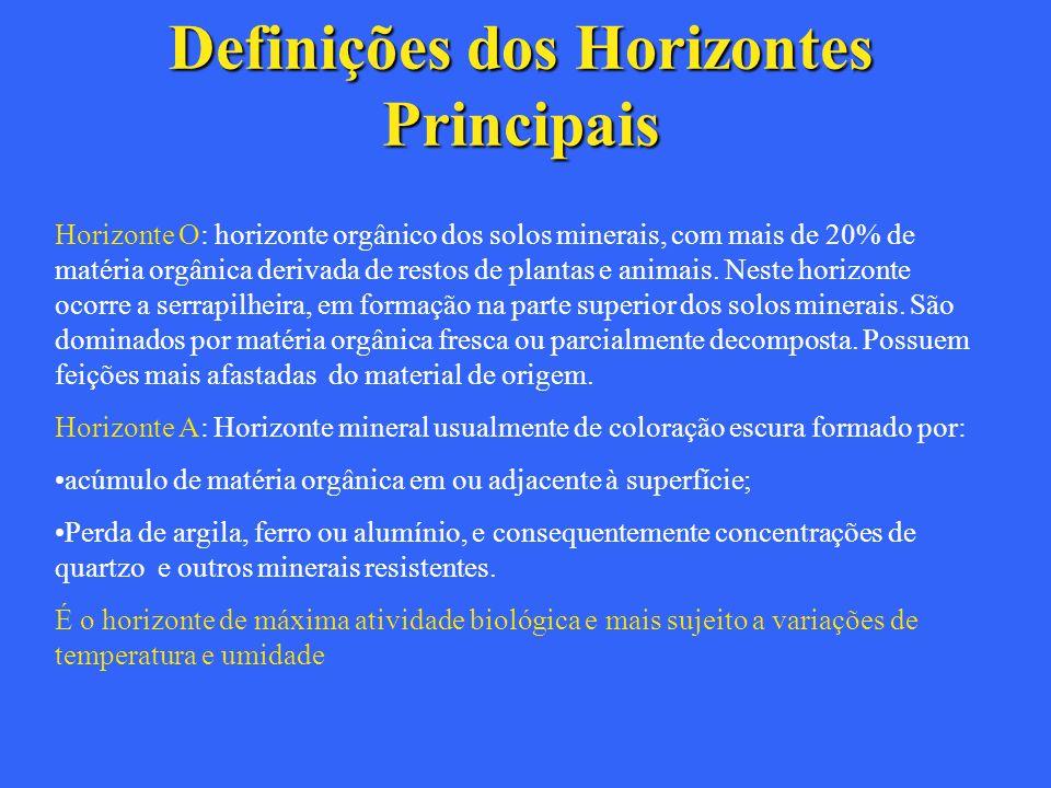 Definições dos Horizontes Principais Horizonte O: horizonte orgânico dos solos minerais, com mais de 20% de matéria orgânica derivada de restos de pla