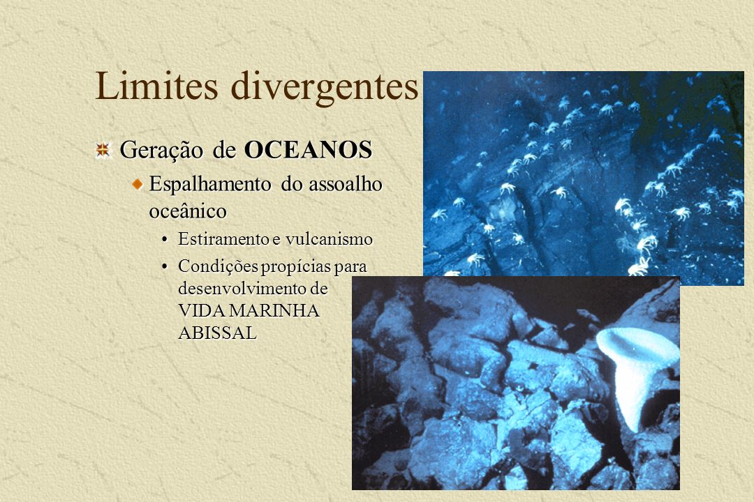 Vida no assoalho oceânico National Geographic Magazine, out 2000