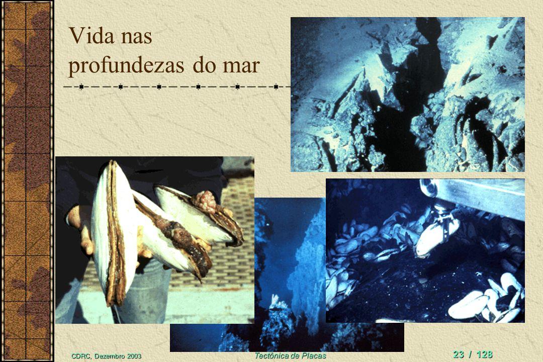 Limites divergentes Geração de OCEANOS Espalhamento do assoalho oceânico Estiramento e vulcanismoEstiramento e vulcanismo Condições propícias para desenvolvimento de VIDA MARINHA ABISSALCondições propícias para desenvolvimento de VIDA MARINHA ABISSAL