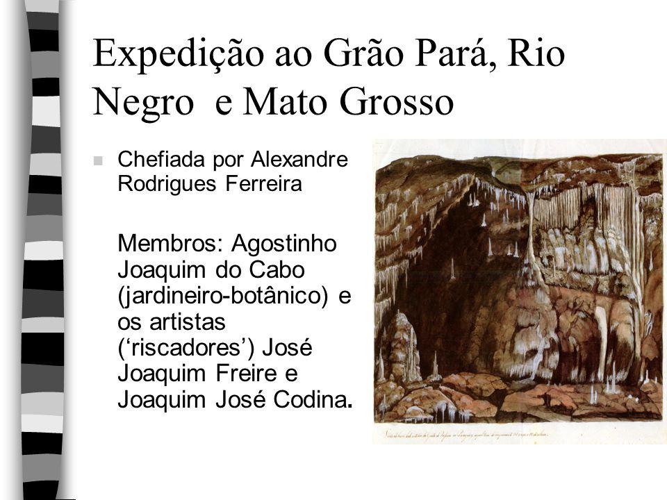 Expedição ao Grão Pará, Rio Negro e Mato Grosso n Chefiada por Alexandre Rodrigues Ferreira Membros: Agostinho Joaquim do Cabo (jardineiro-botânico) e