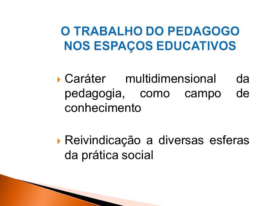 Caráter multidimensional da pedagogia, como campo de conhecimento Reivindicação a diversas esferas da prática social