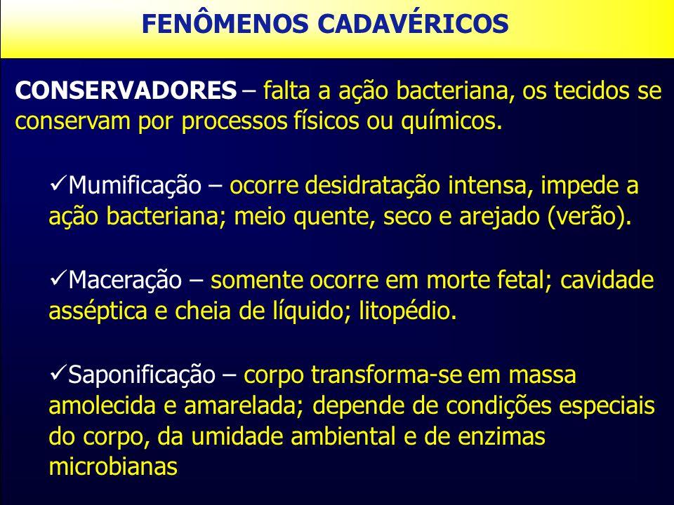 CONSERVADORES – falta a ação bacteriana, os tecidos se conservam por processos físicos ou químicos. Mumificação – ocorre desidratação intensa, impede