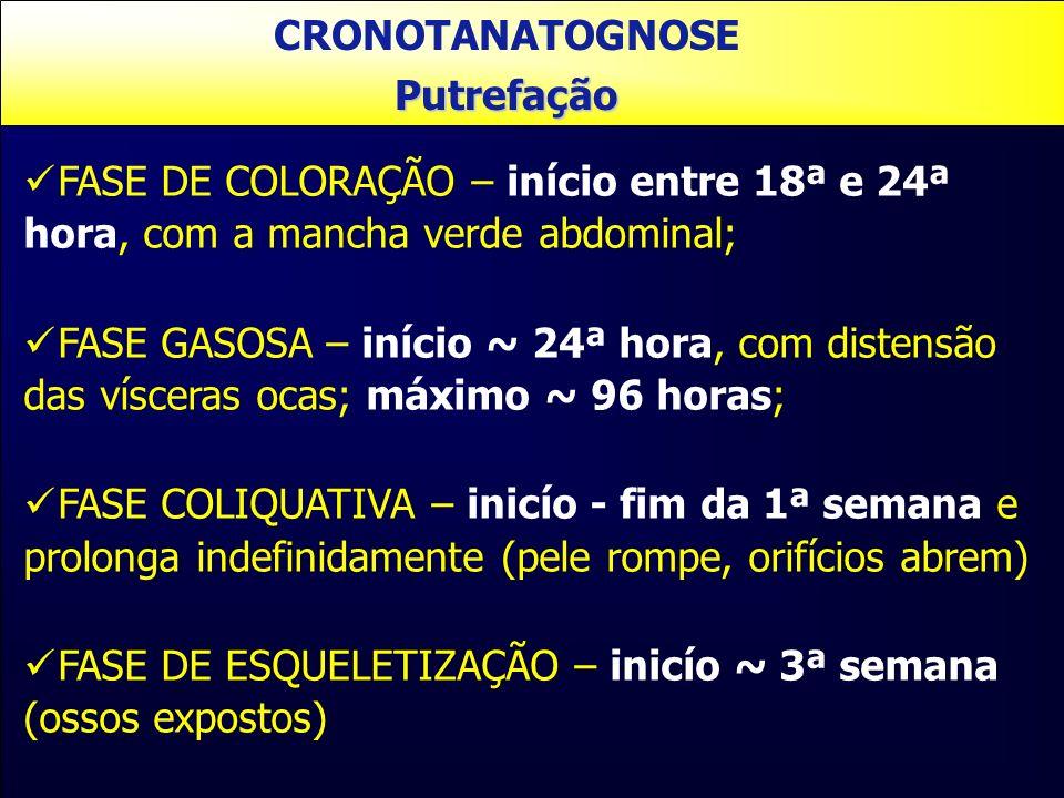 CRONOTANATOGNOSEPutrefação FASE DE COLORAÇÃO – início entre 18ª e 24ª hora, com a mancha verde abdominal; FASE GASOSA – início ~ 24ª hora, com distens
