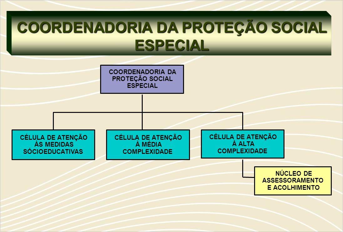 COORDENADORIA DA PROTEÇÃO SOCIAL ESPECIAL CÉLULA DE ATENÇÃO ÀS MEDIDAS SÓCIOEDUCATIVAS COORDENADORIA DA PROTEÇÃO SOCIAL ESPECIAL CÉLULA DE ATENÇÃO À MÉDIA COMPLEXIDADE CÉLULA DE ATENÇÃO À ALTA COMPLEXIDADE NÚCLEO DE ASSESSORAMENTO E ACOLHIMENTO