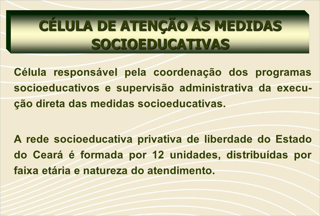 CÉLULA DE ATENÇÃO ÀS MEDIDAS SOCIOEDUCATIVAS Célula responsável pela coordenação dos programas socioeducativos e supervisão administrativa da execu- ção direta das medidas socioeducativas.