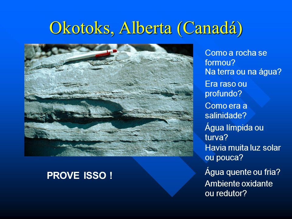 Okotoks, Alberta (Canadá) Como a rocha se formou? Na terra ou na água? Era raso ou profundo? Como era a salinidade? Água límpida ou turva? Havia muita