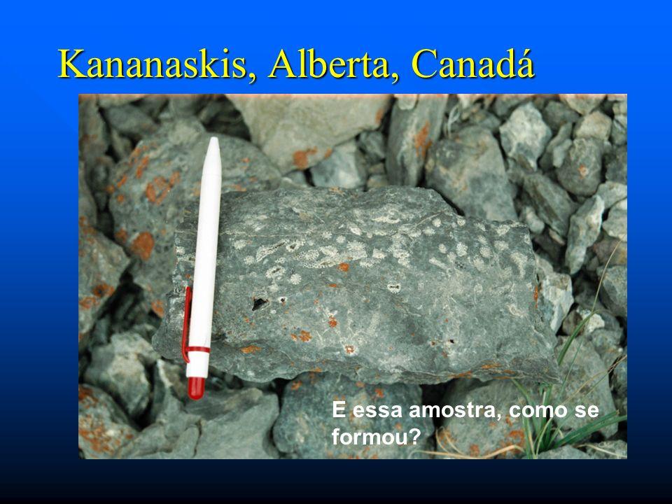 Kananaskis, Alberta, Canadá E essa amostra, como se formou?