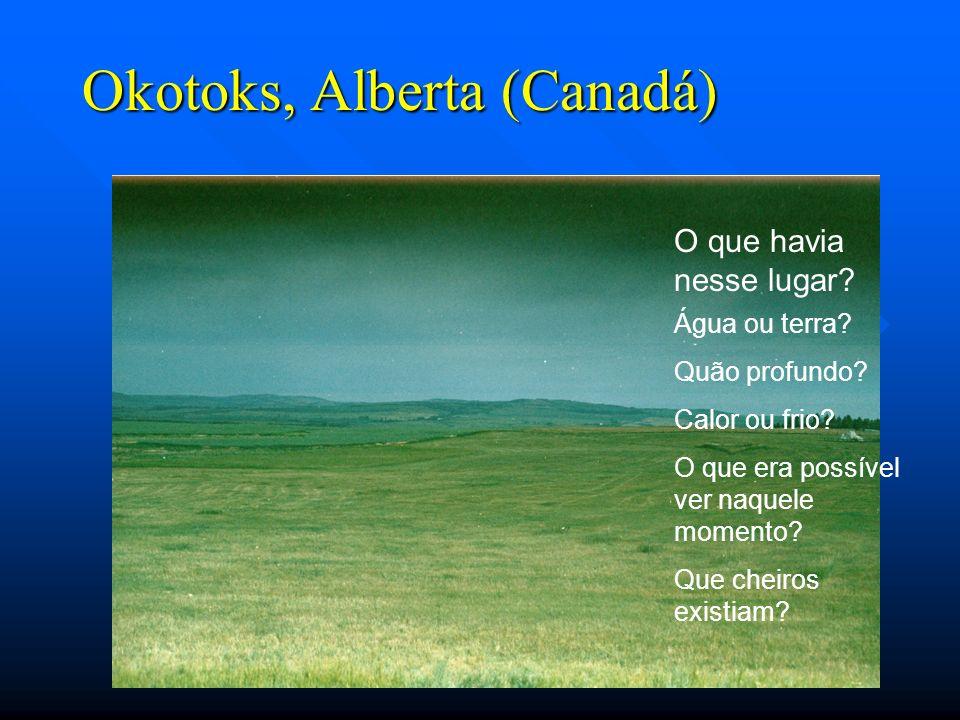 Okotoks, Alberta (Canadá) O que havia nesse lugar? Água ou terra? Quão profundo? Calor ou frio? O que era possível ver naquele momento? Que cheiros ex