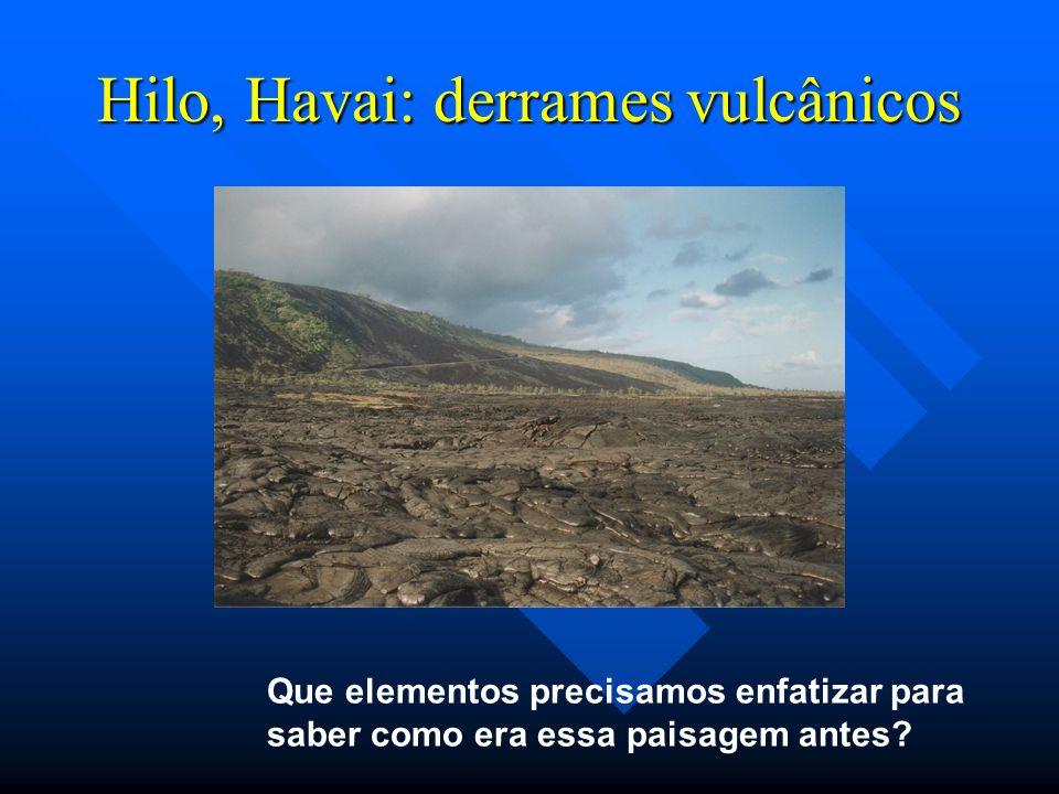 Hilo, Havai: derrames vulcânicos Que elementos precisamos enfatizar para saber como era essa paisagem antes?