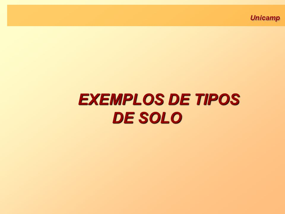 Unicamp EXEMPLOS DE TIPOS DE SOLO EXEMPLOS DE TIPOS DE SOLO