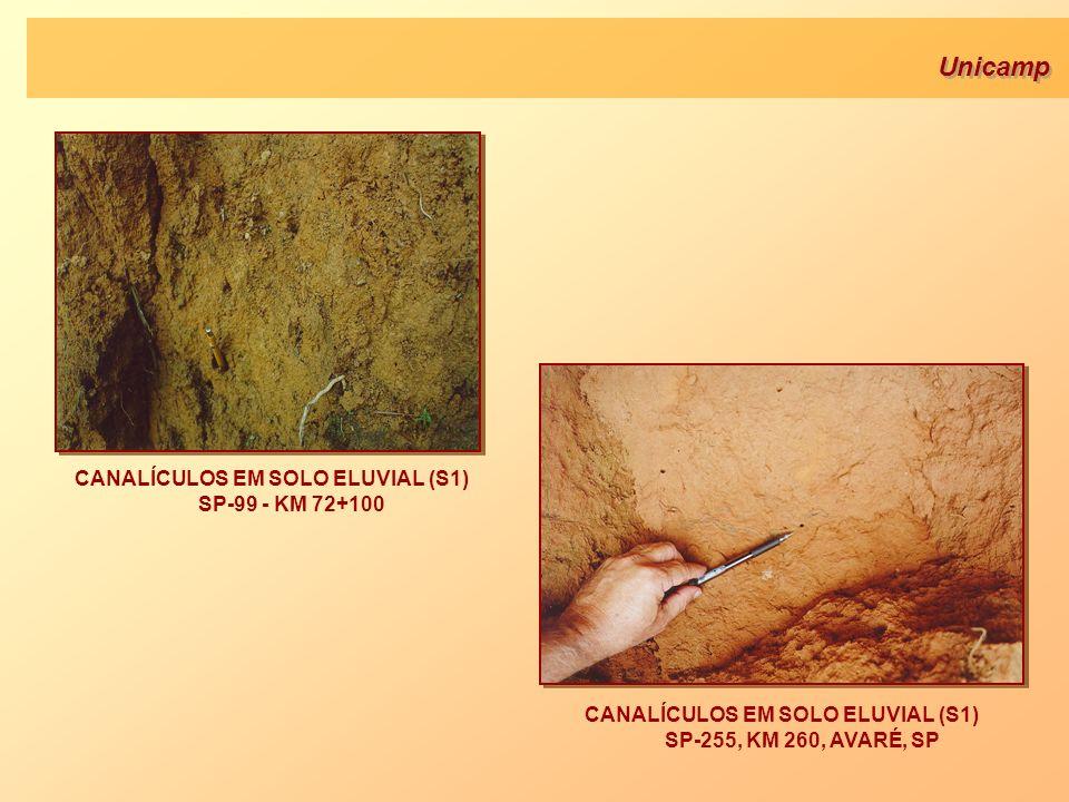Unicamp CANALÍCULOS EM SOLO ELUVIAL (S1) SP-255, KM 260, AVARÉ, SP CANALÍCULOS EM SOLO ELUVIAL (S1) SP-99 - KM 72+100
