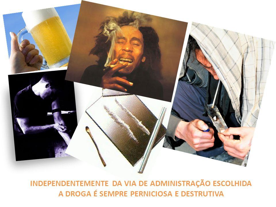 Droga: veneno que ameaça o mundo Os hábitos começam cedo: a popularidade das drogas entre crianças de 10 a 12 anos é cada vez maior.