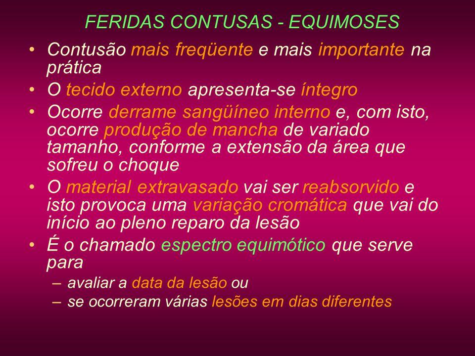 FERIDAS CONTUSAS - EQUIMOSES Contusão mais freqüente e mais importante na prática O tecido externo apresenta-se íntegro Ocorre derrame sangüíneo inter