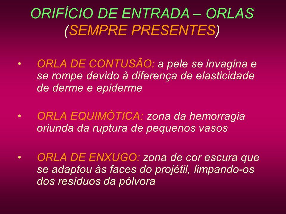 ORIFÍCIO DE ENTRADA – ORLAS (SEMPRE PRESENTES) ORLA DE CONTUSÃO: a pele se invagina e se rompe devido à diferença de elasticidade de derme e epiderme