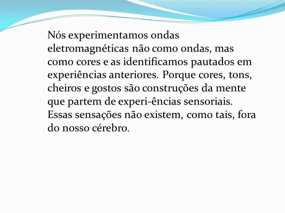 Filtros Físicos - Percepção Percebe-se o mundo em volta, também, de acordo com as características e especificidades dos órgãos dos sentidos do observa