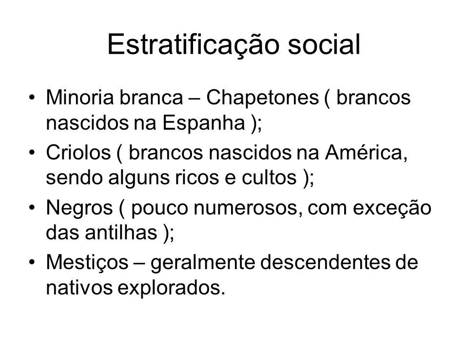 Estratificação social Minoria branca – Chapetones ( brancos nascidos na Espanha ); Criolos ( brancos nascidos na América, sendo alguns ricos e cultos