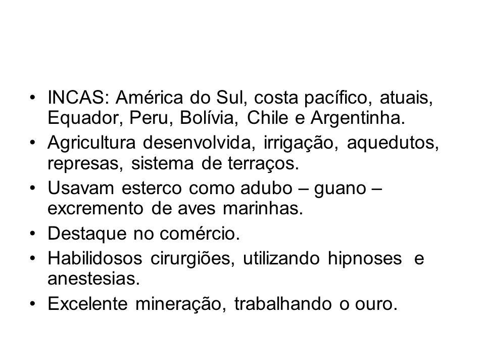 INCAS: América do Sul, costa pacífico, atuais, Equador, Peru, Bolívia, Chile e Argentinha. Agricultura desenvolvida, irrigação, aquedutos, represas, s